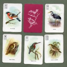 Collectible cards game British Birds by Pepys 1969